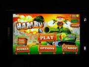 Hambo Komplettlösung