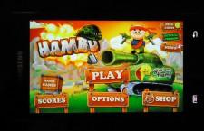 Hambo Lösung