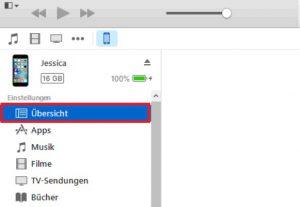 iTunes Übersicht auswählen
